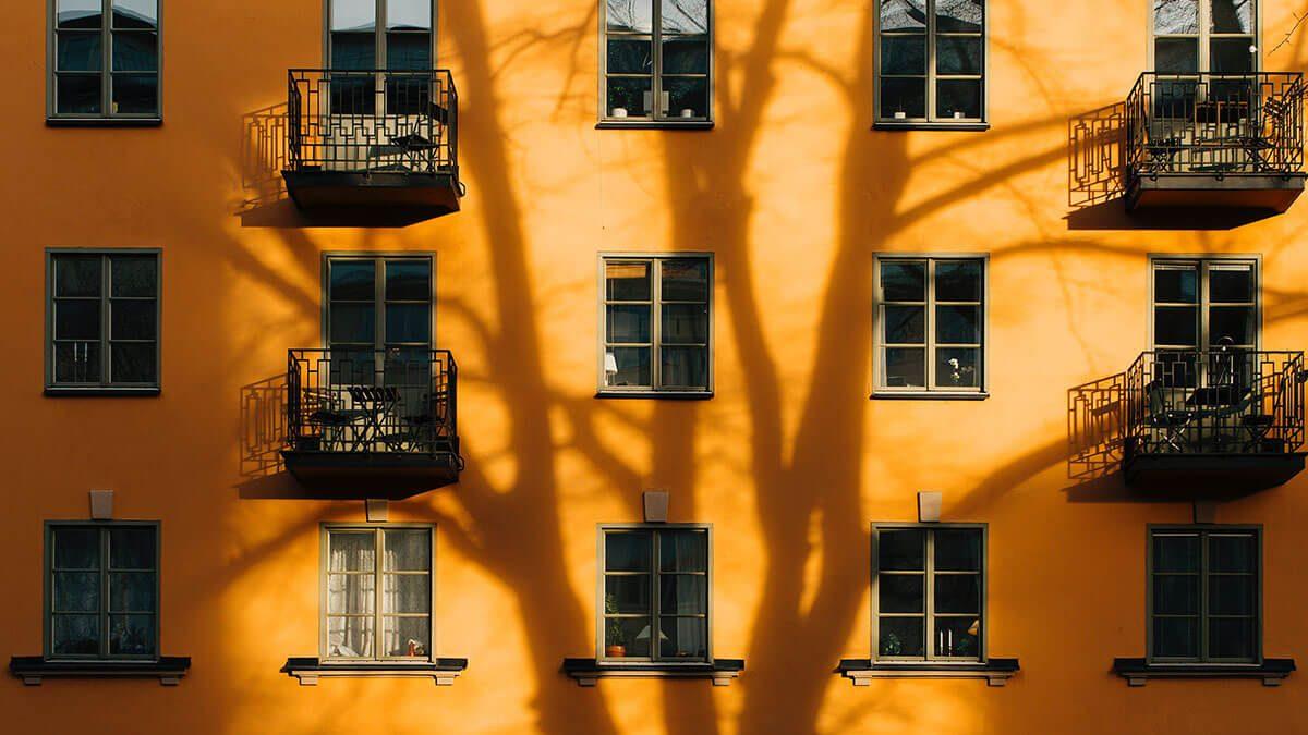 Orange House é uma casa verde. Diga o quê?